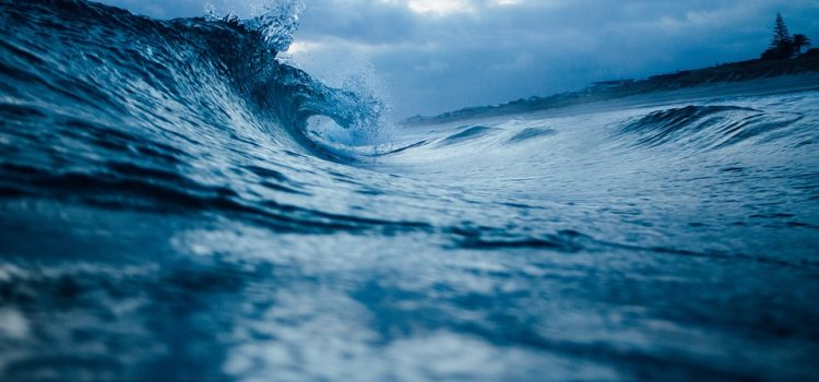 Riding the Waves of Change